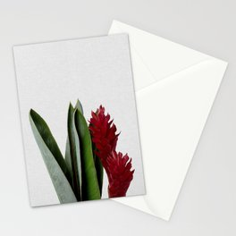 Red Flower Stationery Cards