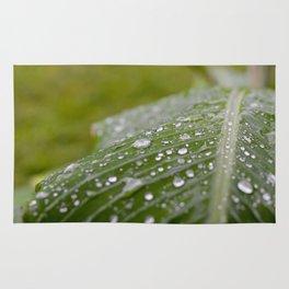 A rainy day Rug