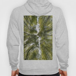 Bamboo Forest in Japan Hoody