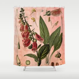 Vintage Botanical Illustration Collage, Foxgloves, Digitalis Purpurea Shower Curtain