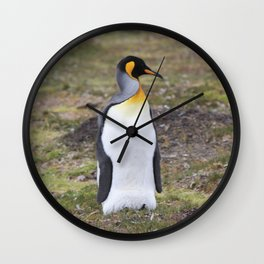 King Pinguin Wall Clock