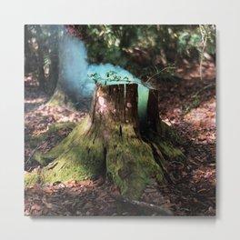 Fairy's Hideaway Metal Print