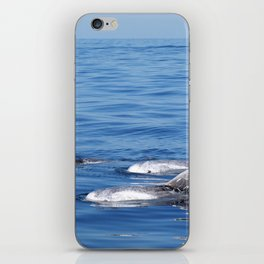 Beautiful risso´s dolphins in Tenerife iPhone Skin