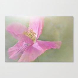 Fuchsia Pink Flower Canvas Print