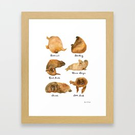 the furnished walrus Framed Art Print