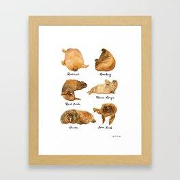 the furnished walrus Framed Art Print
