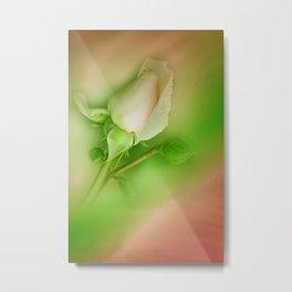 little pleasures of nature -382- Metal Print