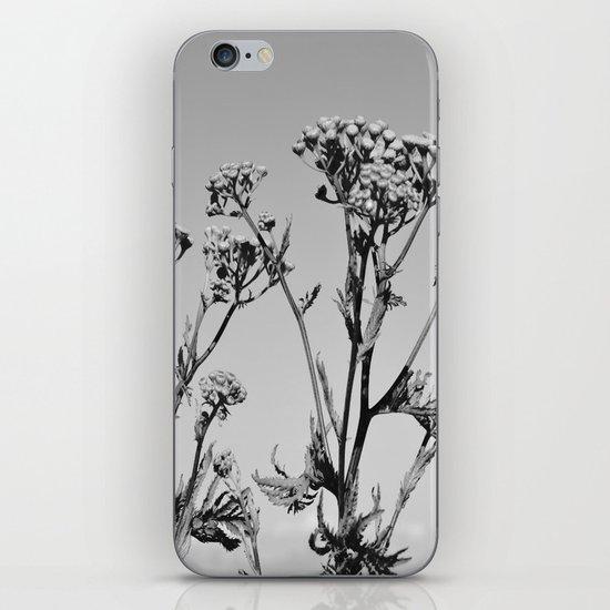 Weeds iPhone & iPod Skin