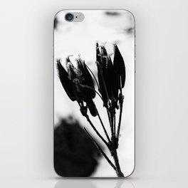 Dormant iPhone Skin
