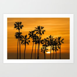 Palm Trees at Sunset by Cabrillo Beach Los Angeles California Art Print