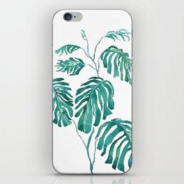 Monstera painting 2017 iPhone Skin