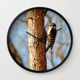 Downey Woodpecker Wall Clock