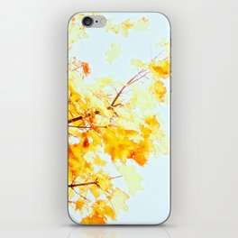 Yellow Maple leaves, Autumn Unfolds iPhone Skin