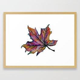 The Fall Season Framed Art Print