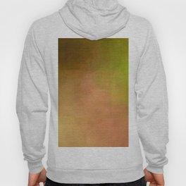 Gay Abstract 04 Hoody