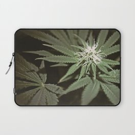 MarryJane Laptop Sleeve