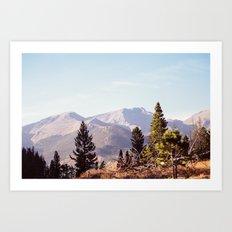 RMNP Art Print