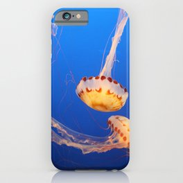 Dance Of The Medusa iPhone Case