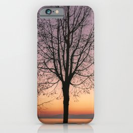 Geneva Lake In Wintertime iPhone Case