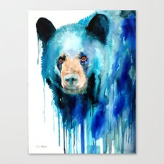 American black bear Canvas Print