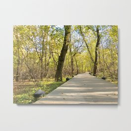 The Natural Path Metal Print