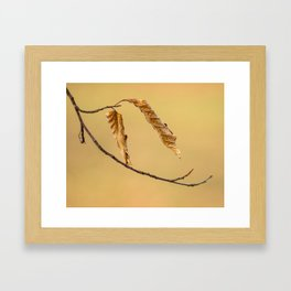 They do not want to give way Framed Art Print
