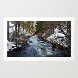 Burney Creek Art Print