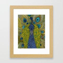 Mr. Pavo Real Framed Art Print