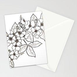 Vine Roses Stationery Cards