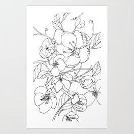 Crabapple Blossoming Art Print