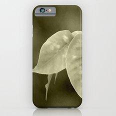 The curtain iPhone 6s Slim Case
