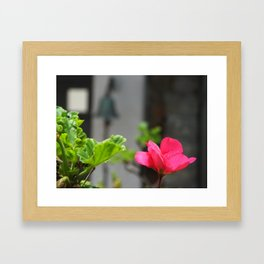 Tranquillity in The Afternoon Framed Art Print