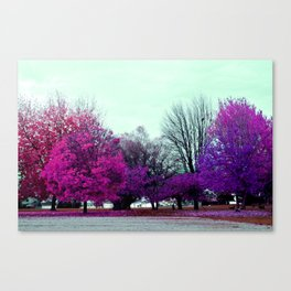 Skittle Trees Canvas Print