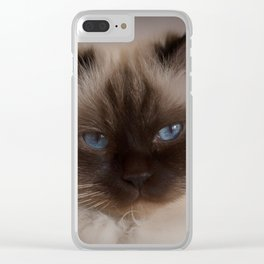 Persian Clear iPhone Case