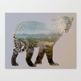 Leopard Shades Canvas Print