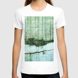 Wall with a river view T-shirt