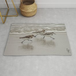 Sandpipers Rug