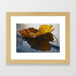 Reflection of a lief Framed Art Print
