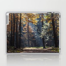 Colorful autumn Laptop & iPad Skin