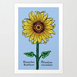 Maximillan Sunflower Art Print