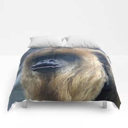 Howler Monkey 1 Comforters