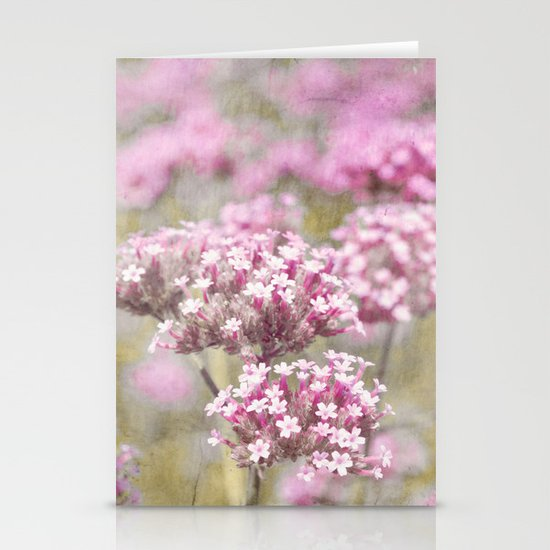 catmint Stationery Cards