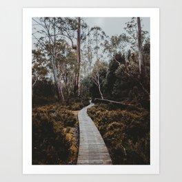 The Overland Track, Tasmania Art Print