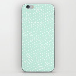 Dotted - Mint iPhone Skin