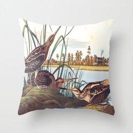 American Snipe Audubon Birds Vintage Scientific Hand Drawn Illustration Throw Pillow