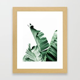 Banana leaf, Plant, Green, Minimal, Trendy decor, Interior, Wall art, Photo Art Print Framed Art Print