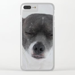 Tonto in the Snow Clear iPhone Case
