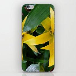 Yellow guzmania tropical flower iPhone Skin