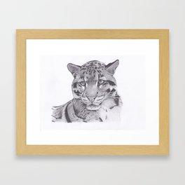 Clouded Leopard - Big Cat Framed Art Print