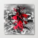 Cardinal Flower by forandphotography